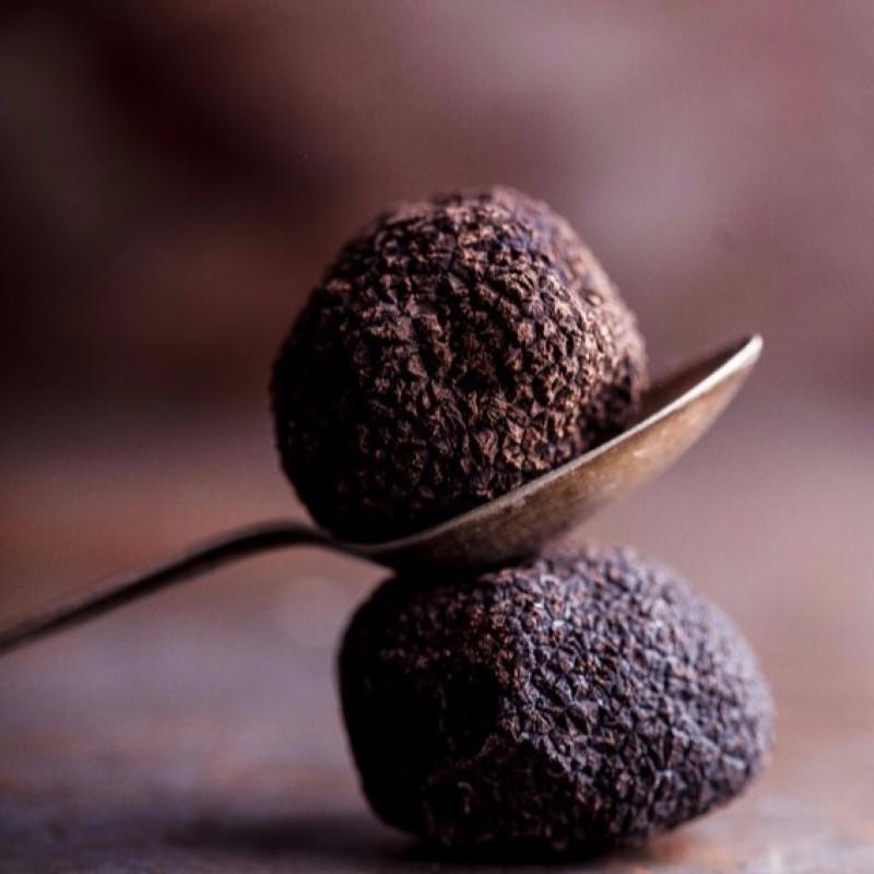 Fresh Black Truffle 100g